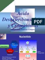 clase (05).pdf