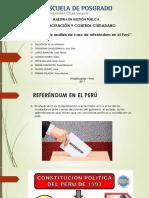 """""""Informe de Análisis de Caso de Referéndum en El Perú"""""""