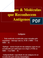 Antigenos e Anticorpos A