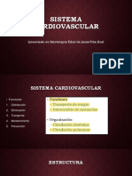 Sistema Cardiovascular 2