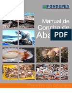 Manual de Concha de Abanico