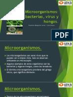Microorganismos Para Ppt