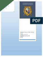 Informe Fin