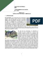 p10. Agricultura Protegida 2014