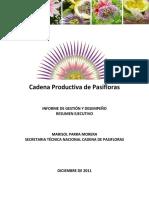 007 - Seg. Plan Anual - Resumen Ejecutivo Cadena de Pasifloras Julio - Dic (1)