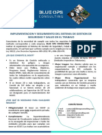 Brochure SSO Imp y Seg Blue Ops v00