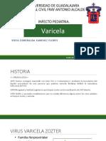 VARICELA, infecto pediatria