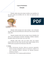 LP Meningitis