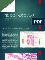 Tejido Muscular histología