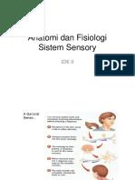 6 Anatomi Dan Fisiologi Sistem Sensori
