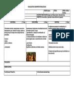 Formato Planeacion de Clase