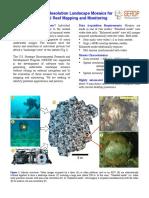 Er Mosaics Coral Monitoring