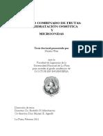 N. Wais - Tesis Doctoral (2011).pdf