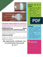 FLEXOR A1.pdf