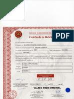 Certificado de Habilidad001