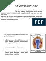 3,1 Desarrollo Embrionario