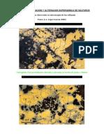 Procesos de Oxidacion y Alteracion Supergenica de Sulfuros 2017