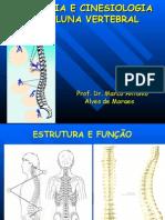 Anatomia_e_Cinesiologia_da_CV_