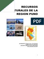 Recursos Naturales de La Region Puno
