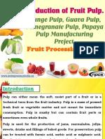 Production of Fruit Pulp. Mango Pulp, Guava Pulp, Pomegranate Pulp, Papaya Pulp Manufacturing Project.