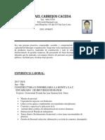 PAULCABREJOSCV .03 - copia.docx