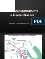 dr. Windhy - Daily ECG.pptx