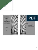 p_flores.pdf