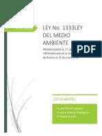 Informe Ley 1333