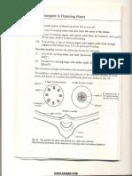 8. Transport in Flowering Plants.pdf