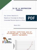 92445195 Cinetica de Destruccion