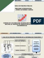 03 NCGA EN BOLIVIA, PROCESO DE ARMINIZACION.pdf