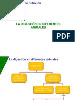 Digestión Animal (1)