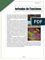 CAP5 LA DERIVADA.pdf
