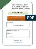 76828428-Paico.docx