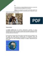 Inseguridad alimentaria 9 de marzo.docx