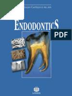 castelluci endodontics VOL II.pdf