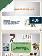 ARQUEOLOGIA_FORENSE2].pptx