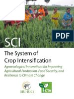 The System of Crop Intensifcation