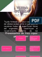 TEJIDOS Y COMPONENTES