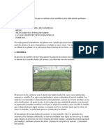 VIVERO HORTICULA PRODUCCION.docx