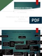 Mapa Conceptual de Organizacion II