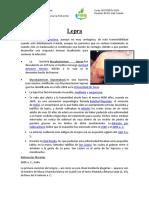 Enfermedades-Clorofila
