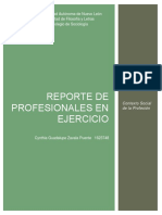 PIA Reporte de profesionales en ejercicio.docx