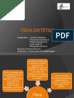 Disertación fibra