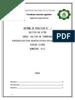 INFORME DE PRACTICA N.docx