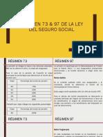 Régimen 73 97 de La Ley Del