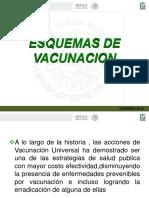 Esquemas de Vacuncion