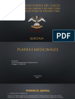 Quechua Plantas Medicinales