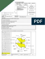 Mace Audit Sheet