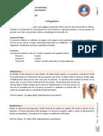 2018 02 12 Proyectos (1)